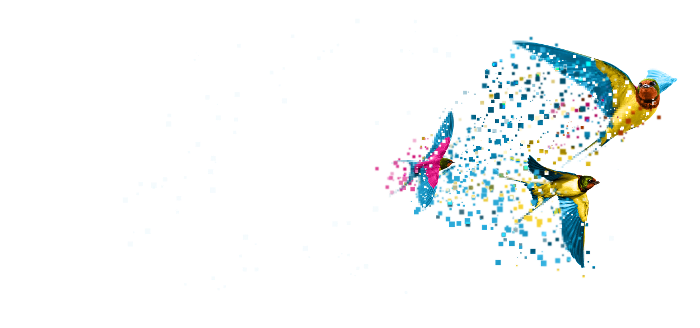 Birds Padlock - Data Migration - Transparent-1