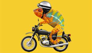 Motorbike_Chameleon_Helmet